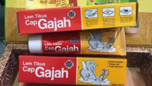 Lem Tikus Cap Gajah 13
