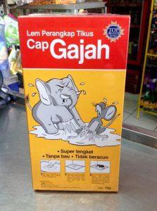 Yuk Intip Rekomendasi Lem Tikus Yang Bagus Usir Hewan Pengerat Di Rumah
